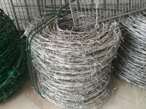 China 12# *14# Galvanized Barbed Wire, Hot Dip Galvanized Iron Wire Fence on sale