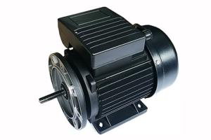 China 0.55kw Single Phase Induction Motor 50HZ/60HZ For Plastic Swimming Pool Pumps on sale