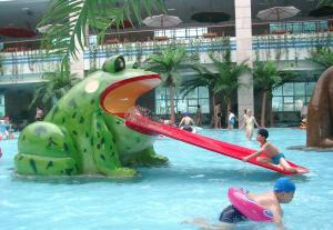 China Frog Water Slide Kids Water Playground Equipment For Swimming Pool on sale