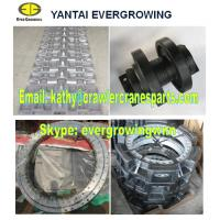 Undercarriage Parts for FUWA QUY50 Crawler Crane
