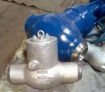 China Swing Check Valve Manufacturer STV Supplies Swing Check Valve, ASTM A217 WC6, 4 Inch, Class 1500 LB, Trim 8#, BW E