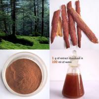 Pine Bark Extract  OPC 95% Polyphenol