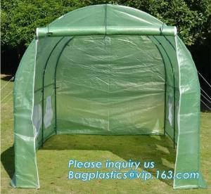 China Excellent Material Agriculture Greenhouse/Low Cost Green House,High quality outdoor garden mini portable green house on sale