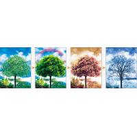 Sheng Qi Season 3d 300*400mm flips pet lenticular picture posters with factory price for selling
