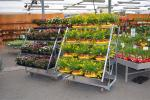 500KG Load Capacity danish flower trolley nursery trolley