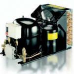 Unidad de condensación refrescada aire encajonado de la refrigeración de Bitzer