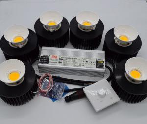 China CXB3590 300W COB LED  DIY Grow Lights with 35G CD DB BIN For  Green Led Grow Lights on sale