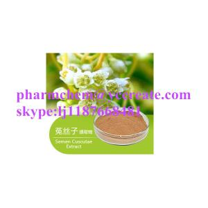 China Hot Sale Manufacturer Natural Herbal Extract Field Dodder Extract Powder on sale