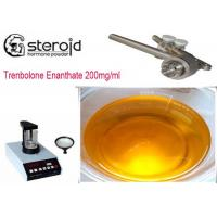 Trenbolone Enanthate 200mg/ml Oil Based Steroids CAS 10161-33-8 For Mass Gaining