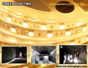 China Anti explsoive 1500 lum Flexible LED Strip Waterproof 60pcs led each meter on sale
