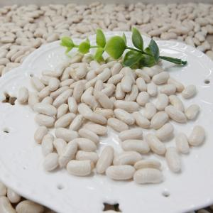 China White Kidney beans,High quality Kidney beans on sale