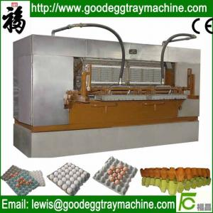 China Egg Tray Production Line, Pulp Molding Machine on sale