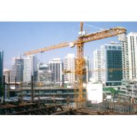 M900 tower crane
