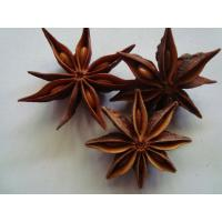 Star Anise/Star Aniseed