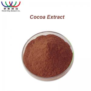 China Antioxidant Cocoa Bean Extract Chocolate Fine Powder For Food Supplement on sale