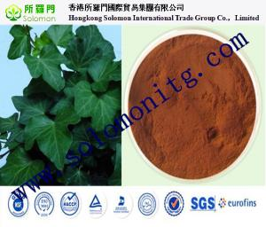 China GMP factory supply Competitive price high quality Ivy leaf powder extract 1%-10%Hederageni on sale