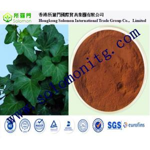 China 4:1/10:1;1%-10%HederacosidesC and 1%-5% Hederagenin Pure Natural Chinese Ivy Stem Extract on sale