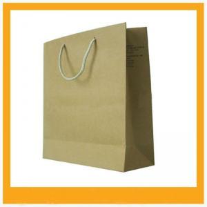 China Custom logo paper carrier bag on sale