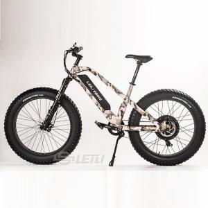 China 2018 LEILI 1000W Fat tire e-bike electric bicycle mountain e-bike 26 electric bike on sale