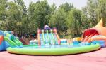 Octopus Commercial Inflatable Water Park Customized Size Acceptable