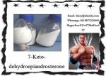 Fat Burning Trenavar / Trendione Prohormone Supplements CAS 566-19-8