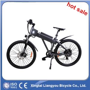 China Hot Selling Electric Bicycle; CE Electric Bicycle on sale