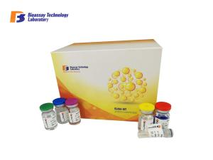 China Sandwich Human Elisa Kit 96 Well For Kidney Injury Molecule 1 Detection on sale