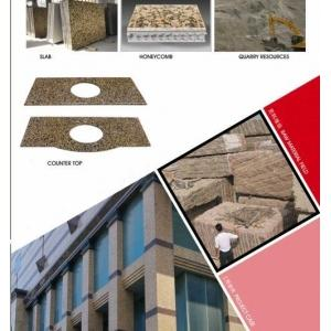 China New Granite:Classic Brown ,Vanity Top ,wall cladding ,slab on sale