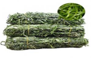 China Seafood Fresh OR  Dry Kelp Seaweed Silk Rich In Algae Aroma / Vitamin , Alaria on sale