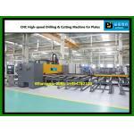 Perforación del CNC y cortadora de alta velocidad para las placas (modelo PDC25)