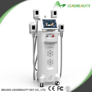China 2000W weight loss 26% for one treatment slimming machine for sale on sale