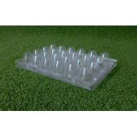 recyclable Clear Disposable Food Trays Quail Egg Trays 4x6 Range