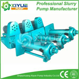 China SP type vertical slurry pump on sale