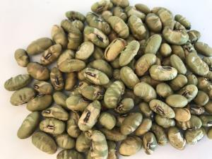 China Healthy Organic Soya Bean Snacks Edamame Hard Texture 12 Months Expiration Date on sale