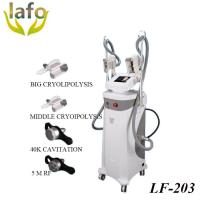 4 Treament handles Cavitation Cryolipolysis RF Beauty Machine For saln and clinic