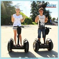 2015 Outdoor use mini electric vehicle for disabled