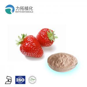 China 100% Organic Certificate Bulk Freeze Dried Powder Fragaria x ananassa Duch on sale