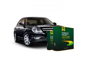 China Quick Drying 2K Solid Auto Body Metal Filler Deep Emerald Green Flat Black on sale