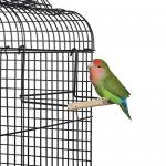 enjaule la pequeña perca movible para los pájaros, los pinzones y el bugie