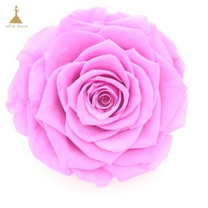 China Grade A Real Touch Artificial Rose Silk Flower Head Party Wedding Decor Craft DIY on sale