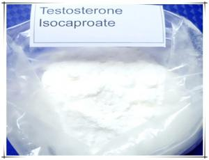 China 99% High Quality raw white powder Testosterone Isocaproate  CAS:15262-86-9  giving males their specific sexual traits on sale