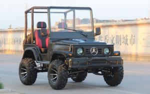 China Mini Jeep 4WD Racing ATV Sports Go Kart Buggy For Adult , 300cc Go Kart on sale