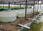 China 3500 liter  No Collapsible aquaculture Circle indoor commercial PE raised plastic fish ponds wholesale