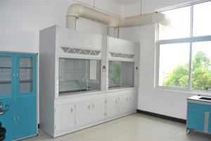 China All Cold Rolled Steel Lab Fume Cupboard , Portable Chemical Fume Hood With Exhaust Fan on sale