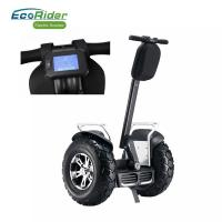 China Double Battery Brushless Motor Two Wheeled Electric Scooter Segway Electric Scooter on sale