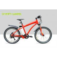 Red Pedal Assist  high end Electric Mountain Bikes 48V 500W Gear Motor Cruiser Bicycle
