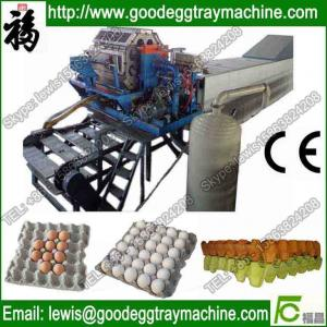 China Paper egg tray or egg box making machine on sale