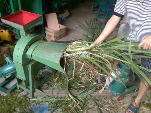 China Supply silage ensilage  Cutting machine /small ensilage chaff cutter / ensilage factory direct selling on sale