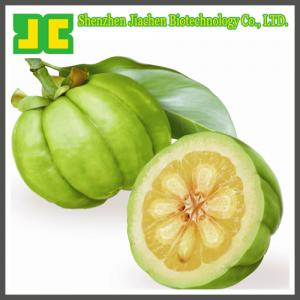 China Garcinia Cambogia Extract Powder as weight loss supplement, 40%~60% Hydroxycitric Acid HCA on sale