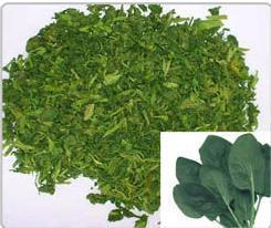 China dehydrated  spinach flakes dehydrated vegetable dehydrated food food accessaries on sale